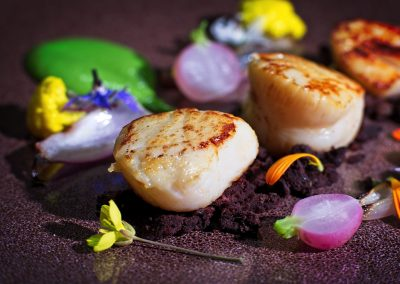 Scallops with pea puree