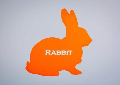 ginger-peanut0056 - rabbit bedroom door 720 X 479
